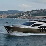 Private Boat Tour on Bosphorus Cruise in Istanbul